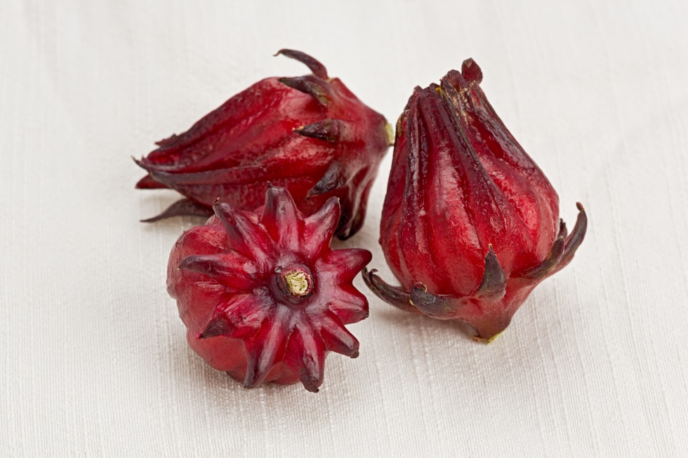 Three whole roselle fruit on a cloth background.